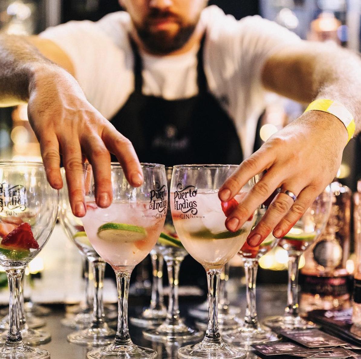 Puerto De Indias - Strawberry Gin