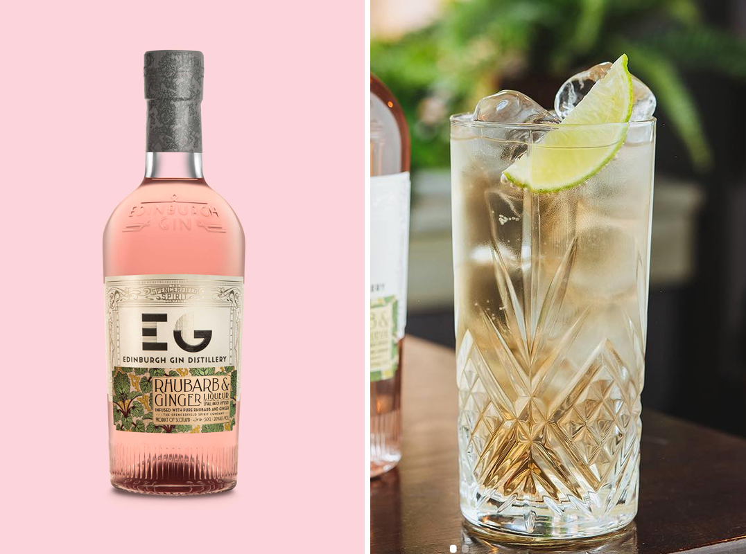 5 Enticing Gin and Ginger Ale Cocktails