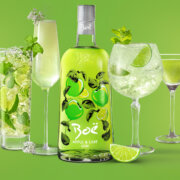 Boe Apple & Lime Gin